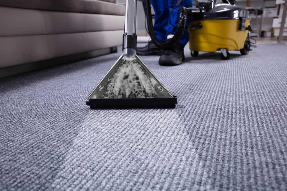 Carpet-Cleaning-Sample-Blog-Image