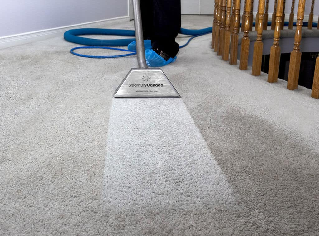 Carpet Cleaner Quarriers Village