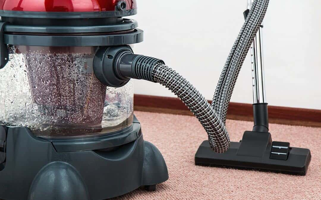 Professional Carpet Cleaning vs. DIY