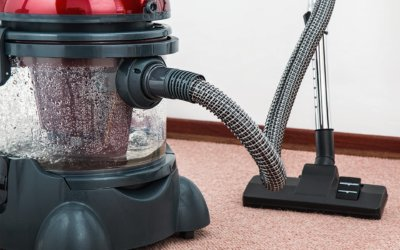 Professional Carpet Cleaning vs. DIY